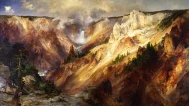 صورة التاريخ البيئي الأمريكي