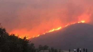 Photo of Fires devour the Syrian countryside and threaten civilian homes