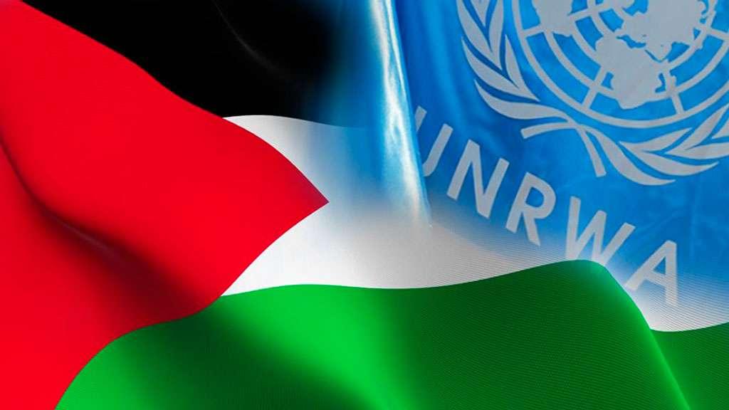 أونروا-فلسطين