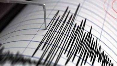 Earthquake hits Pacific Ocean, Arabic newspaper in Boston-USA-Profile News