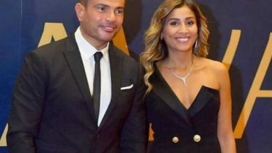 Photo of The fact that Amr Diab and Dina El-Sherbiny disagree