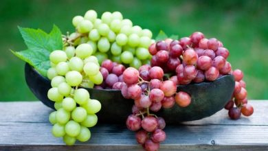 Photo of Learn about the relationship of grapes to back pain