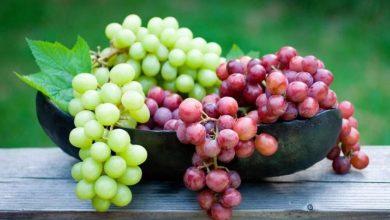 صورة تعرف على علاقة العنب بـ آلام الظهر