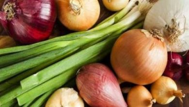 Amazing benefits of eating onions daily, Arabic newspaper in Boston-USA-Profile News
