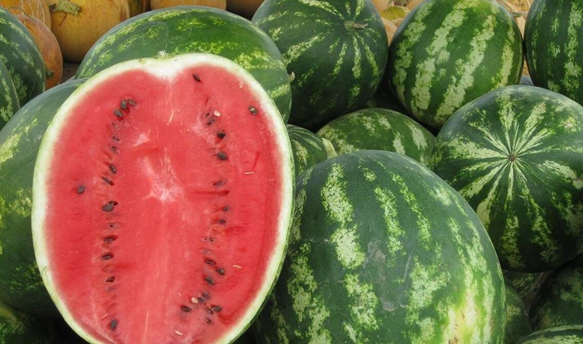 Magical benefits of watermelon … secret of choosing it !!, Arabic newspaper in Boston-USA-Profile News